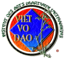Institut arts martiaux vietnamiens viet vo dao big